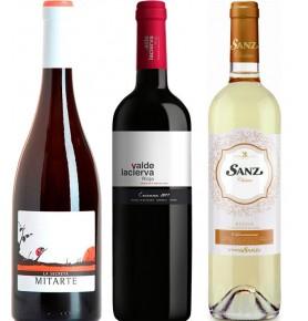 Assortiment de 3 bouteilles de vins espagnoles à prix malin. La Secreta 2015, Valdelacierva 2014, Sanz Clasico 2018
