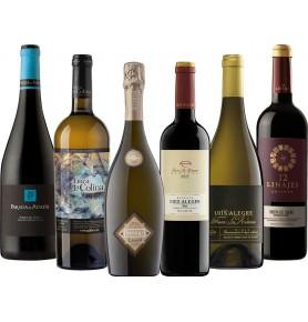 Assortiment de 6 bouteilles notées 90+ par le guide Peñin des vins espagnols