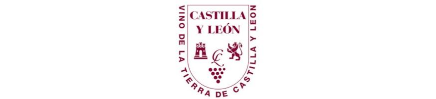Vin rouge espagnol - Appellation Castilla y Leon